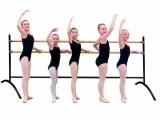 Ballet / Danza