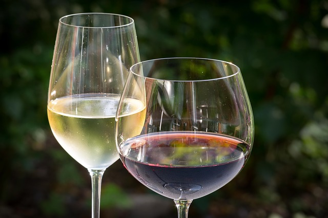 con que acompanar el vino:
