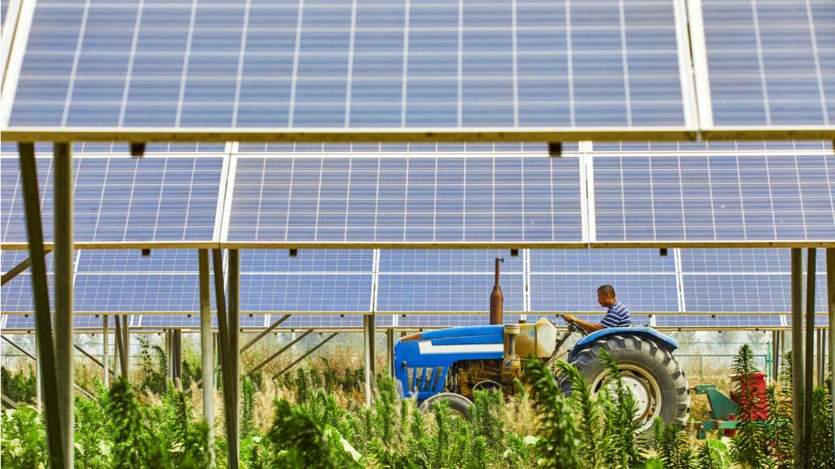 La agricultura del futuro, entrevista a Enrique Dans 3