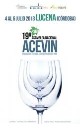 Cartel XIX Asamblea anual de ACEVIN 2013