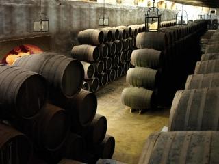 Seminario sobre Formas de Integración y Cooperación de las cooperativas vitivinícolas