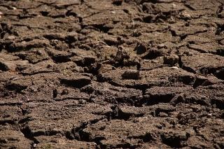 Proyecto de investigación sobre la repercusión del cambio climático en el viñedo