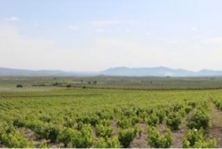 Participa para hacer de Montilla-Moriles un lugar mas sostenible