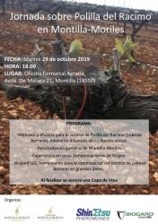 Jornada sobre Polilla del Racimo en Montilla-Moriles