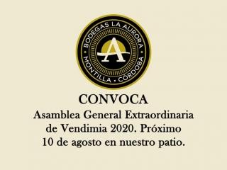Asamblea General Extraordinaria de vendimia, 10 de agosto 2020