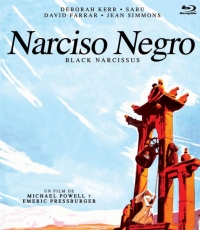 Narciso Negro [Blu Ray]