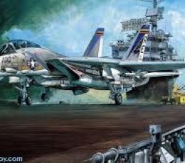 F-14A U.S. NAVY FIGHTER