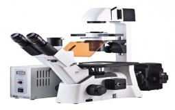 Microscopios biologicos invertidos