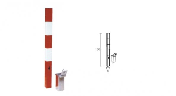Pilona Extraible