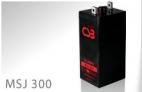 BATERIA CSB MSJ300