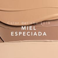 color-del-año-2019-MIEL-ESPECIADA
