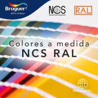 colores-Bruguer-carta-ncs-ral