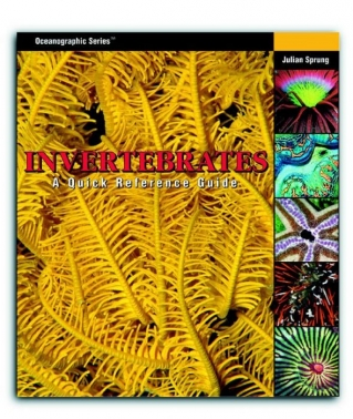 """INVERTEBRATES: A QUICK REFERENCE GUIDE"""" INGLÉS"""