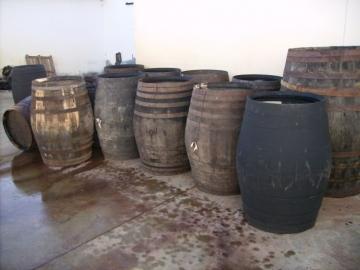 Vinet på ekfat