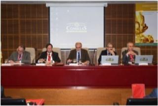CONGRESO INTERNACIONAL DE INGENIERIA DE SEGURIDAD CONTRA INCENDIOS