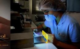 Prosthesis Laboratory