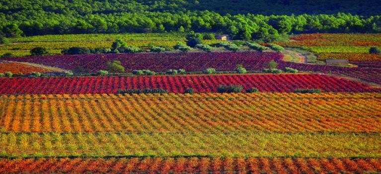 Un paseo por la Toscana Valenciana