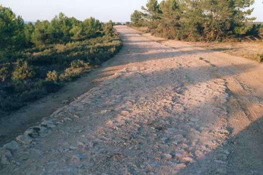 Ruta veraniega de senderismo en Moixent: la Vía Augusta y el paisaje mediterráneo
