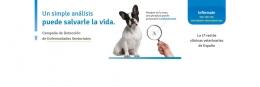 Enfermedades vectoriales 2017