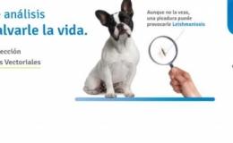 Campaña Leishmania y Erlichia