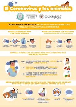 PROTOCOLO DE PREVENCION FRENTE A COVID-19