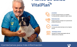 Vitalplan seguro sanitario mascotas