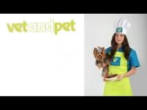 Vet and Pet