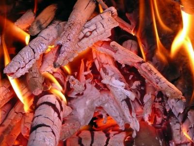 http://www.fmcalefaccion.com/es/9-biomasa