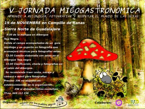19 de Noviembre en Campillo de ranas