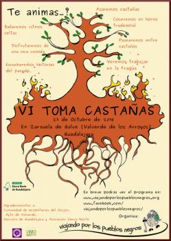 VI TOMA CASTAÑAS