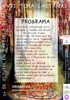 PROGRAMA VII TOMA CASTAÑAS