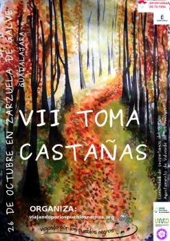 VII TOMA CASTAÑAS