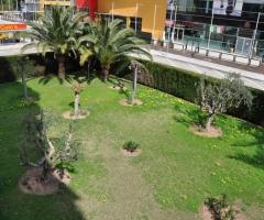 Parque 6 (Jardines)