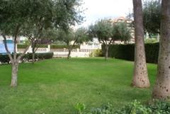 Edf. Sorolla ( jardin)