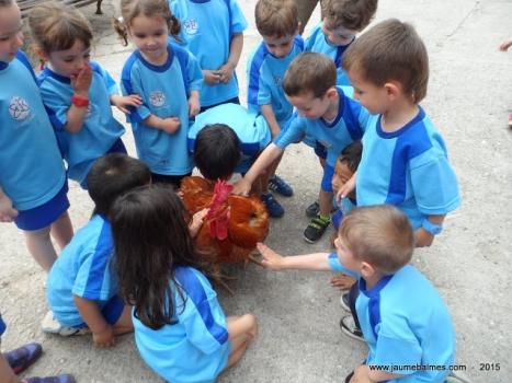 Sortida a la Granja El Canadell - Infantil
