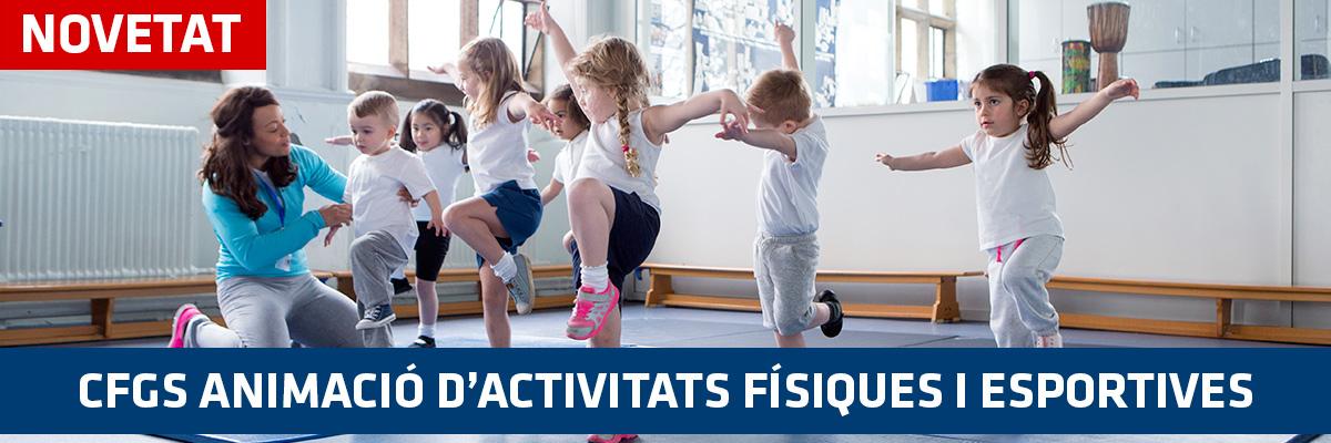 Activitats físiques i esportives