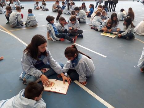 Sortides i Activitats Infantil i Primària