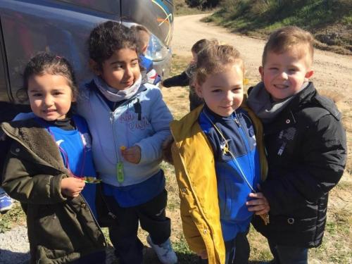 Sortides i Activitats Infantil i Primària 2018-19