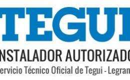 Servicio Oficial TEGUI