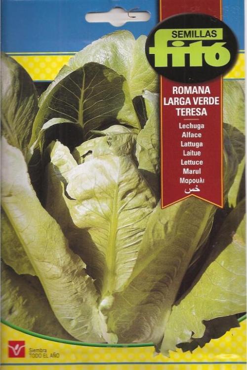LECHUGA ROMANA LARGA VERDE TERESA (8 gr.).