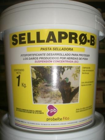 SELLAPRO-B (1 Kgr.) [JED]
