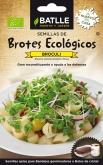 BROCOLI - PARA BROTES