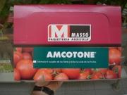 AMCOTONE (300 gr. - Caja con 30x10 gr.).