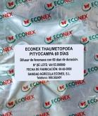 ECONEX THAUMETOPOEA PITYOCAMPA (60 días)