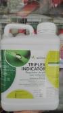 TRIPLEX INDICATOR (5 l.). [R]