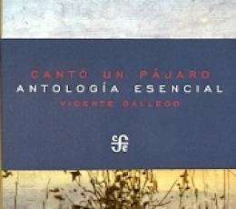 CANTO UN PAJARO/ANTOLOGIA ESENCIAL / GALLEGO,...