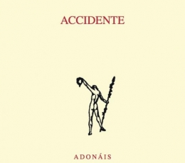 ACCIDENTE / ROMAN ALVAREZ, CAMINO