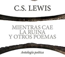 MIENTRAS CAE LA RUINA Y OTROS POEMAS/ANTOLOGIA...