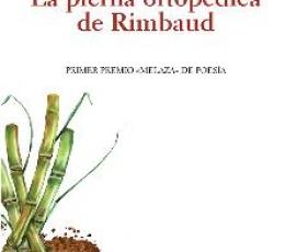 PIERNA ORTOPEDICA DE RIMBAUD, LA / GRACIA MOSTEO,...