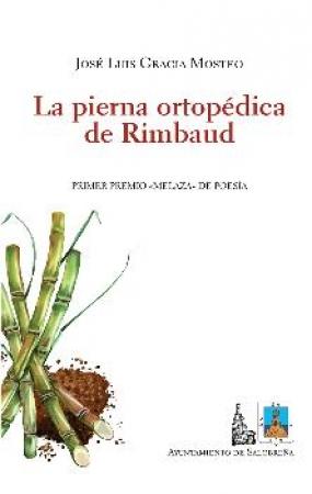 PIERNA ORTOPEDICA DE RIMBAUD, LA / GRACIA MOSTEO, JOSE LUIS